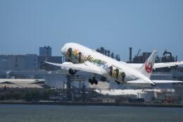 こみけさんが、羽田空港で撮影した日本航空 787-9の航空フォト(飛行機 写真・画像)