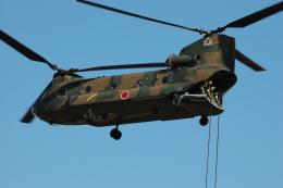 チャーリーマイクさんが、習志野演習場で撮影した陸上自衛隊 CH-47Jの航空フォト(飛行機 写真・画像)