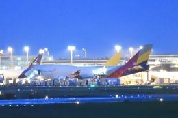 木人さんが、成田国際空港で撮影したアシアナ航空 747-48EM(BDSF)の航空フォト(飛行機 写真・画像)