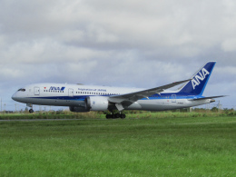 ノリださんが、宮古空港で撮影した全日空 787-8 Dreamlinerの航空フォト(飛行機 写真・画像)