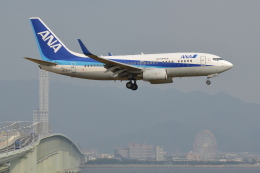 Deepさんが、関西国際空港で撮影した全日空 737-781の航空フォト(飛行機 写真・画像)