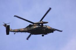 けいとパパさんが、八尾空港で撮影した陸上自衛隊 UH-60JAの航空フォト(飛行機 写真・画像)