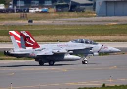 こつぽんさんが、三沢飛行場で撮影したアメリカ海軍 EA-18G Growlerの航空フォト(飛行機 写真・画像)
