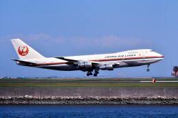 パール大山さんが、羽田空港で撮影した日本航空 747-146B/SRの航空フォト(飛行機 写真・画像)