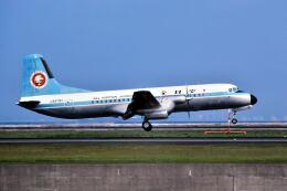 パール大山さんが、羽田空港で撮影した全日空 YS-11A-500の航空フォト(飛行機 写真・画像)