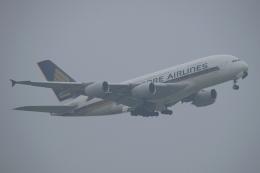 木人さんが、成田国際空港で撮影したシンガポール航空 A380-841の航空フォト(飛行機 写真・画像)