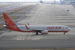 神宮寺ももさんが、関西国際空港で撮影したチェジュ航空 737-8BKの航空フォト(飛行機 写真・画像)