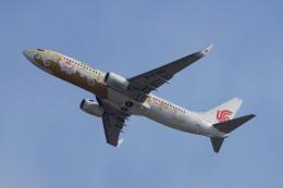 神宮寺ももさんが、関西国際空港で撮影した中国国際航空 737-89Lの航空フォト(飛行機 写真・画像)