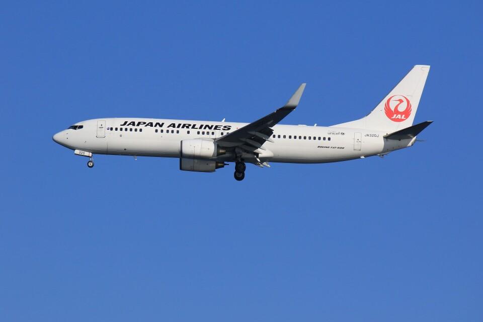 メンチカツさんの日本航空 Boeing 737-800 (JA320J) 航空フォト