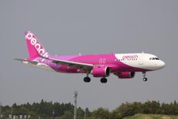 赤ちんさんが、成田国際空港で撮影したピーチ A320-251Nの航空フォト(飛行機 写真・画像)