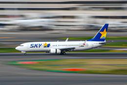 ピノピーさんが、羽田空港で撮影したスカイマーク 737-86Nの航空フォト(飛行機 写真・画像)