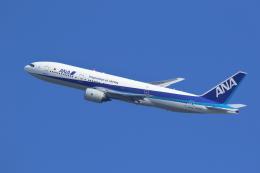kaz787さんが、伊丹空港で撮影した全日空 777-281の航空フォト(飛行機 写真・画像)