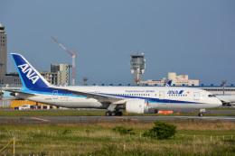 アルビレオさんが、成田国際空港で撮影した全日空 787-8 Dreamlinerの航空フォト(飛行機 写真・画像)