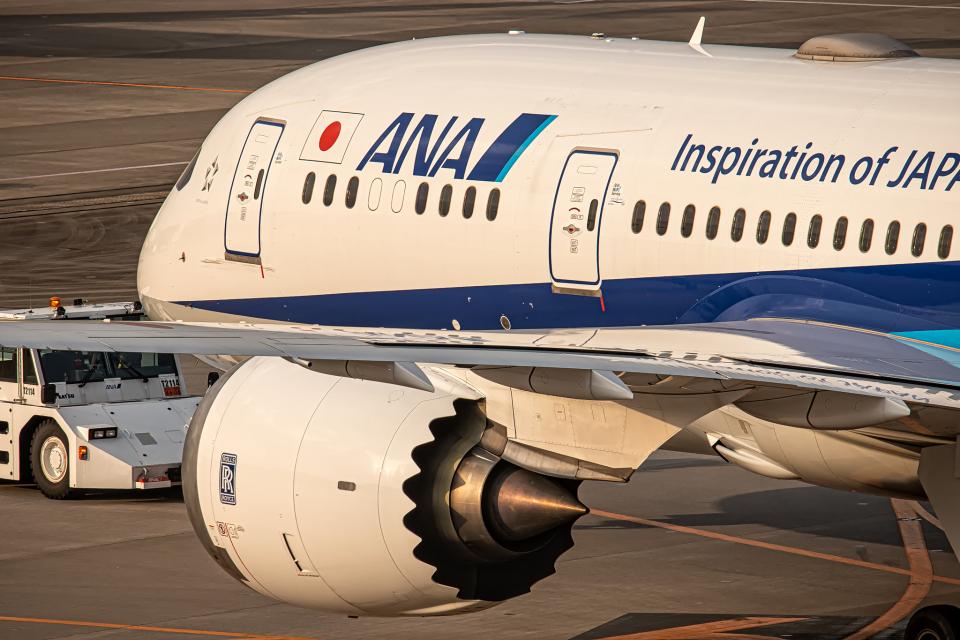 SGR RT 改さんの全日空 Boeing 787-8 Dreamliner (JA818A) 航空フォト