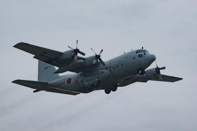 Mochi7D2さんが、厚木飛行場で撮影した海上自衛隊 C-130Rの航空フォト(飛行機 写真・画像)