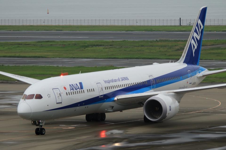 Hiro-hiroさんの全日空 Boeing 787-9 (JA833A) 航空フォト