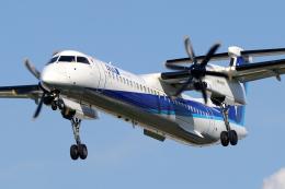 chrisshoさんが、伊丹空港で撮影したANAウイングス DHC-8-402Q Dash 8の航空フォト(飛行機 写真・画像)