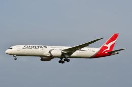 チョロ太さんが、成田国際空港で撮影したカンタス航空 787-9の航空フォト(飛行機 写真・画像)