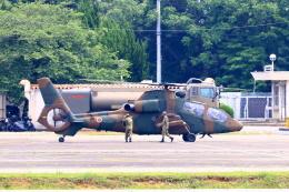 Zakiyamaさんが、熊本空港で撮影した陸上自衛隊 OH-1の航空フォト(飛行機 写真・画像)
