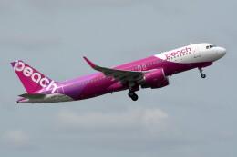 @たかひろさんが、成田国際空港で撮影したピーチ A320-214の航空フォト(飛行機 写真・画像)