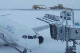 磐城さんが、新千歳空港で撮影したバニラエア A320-216の航空フォト(飛行機 写真・画像)