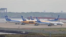 誘喜さんが、羽田空港で撮影した全日空 787-8 Dreamlinerの航空フォト(飛行機 写真・画像)