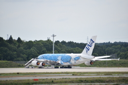 Anchorage2000さんが、成田国際空港で撮影した全日空 A380-841の航空フォト(飛行機 写真・画像)