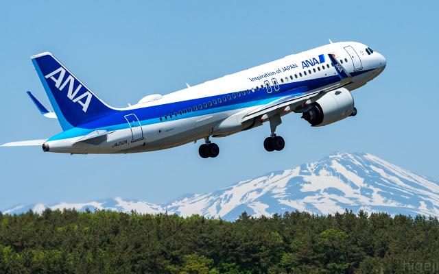 航空フォト:JA212A 全日空