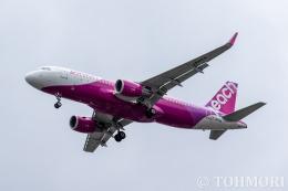 遠森一郎さんが、福岡空港で撮影したピーチ A320-214の航空フォト(飛行機 写真・画像)