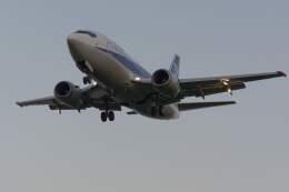 平凡なおっちゃんさんが、伊丹空港で撮影したANAウイングス 737-5L9の航空フォト(飛行機 写真・画像)