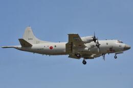 350JMさんが、厚木飛行場で撮影した海上自衛隊 P-3Cの航空フォト(飛行機 写真・画像)
