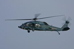 tsubameさんが、築城基地で撮影した航空自衛隊 UH-60Jの航空フォト(飛行機 写真・画像)