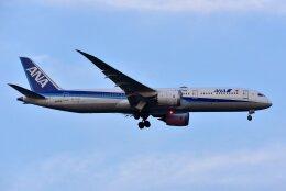 islandsさんが、羽田空港で撮影した全日空 787-9の航空フォト(飛行機 写真・画像)