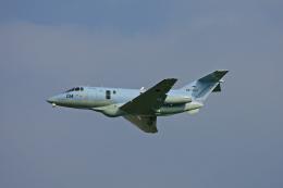 tsubameさんが、築城基地で撮影した航空自衛隊 U-125A(Hawker 800)の航空フォト(飛行機 写真・画像)