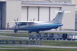 HEATHROWさんが、嘉手納飛行場で撮影したアメリカ空軍 C-146A Wolfhoundの航空フォト(飛行機 写真・画像)