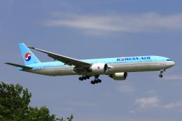 おっしーさんが、成田国際空港で撮影した大韓航空 777-3B5/ERの航空フォト(飛行機 写真・画像)