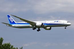 おっしーさんが、成田国際空港で撮影した全日空 787-10の航空フォト(飛行機 写真・画像)