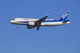 メンチカツさんが、羽田空港で撮影した全日空 A320-271Nの航空フォト(飛行機 写真・画像)