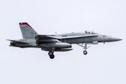 Flankerさんが、厚木飛行場で撮影したアメリカ海兵隊 F/A-18C Hornetの航空フォト(飛行機 写真・画像)