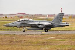 Flankerさんが、岩国空港で撮影したアメリカ海軍 F/A-18F Super Hornetの航空フォト(飛行機 写真・画像)