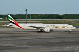 @たかひろさんが、成田国際空港で撮影したエミレーツ航空 777-31H/ERの航空フォト(飛行機 写真・画像)