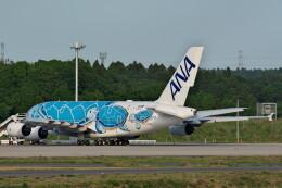@たかひろさんが、成田国際空港で撮影した全日空 A380-841の航空フォト(飛行機 写真・画像)