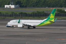 @たかひろさんが、成田国際空港で撮影した春秋航空日本 737-81Dの航空フォト(飛行機 写真・画像)