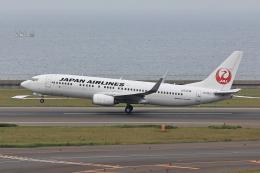 わんだーさんが、中部国際空港で撮影した日本航空 737-846の航空フォト(飛行機 写真・画像)