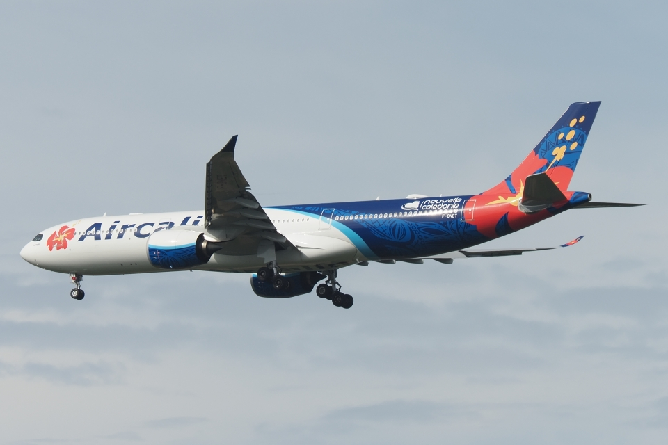 木人さんのエアカラン Airbus A330-900 (F-ONET) 航空フォト