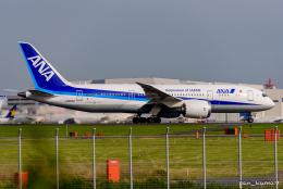ぱん_くまさんが、羽田空港で撮影した全日空 787-8 Dreamlinerの航空フォト(飛行機 写真・画像)