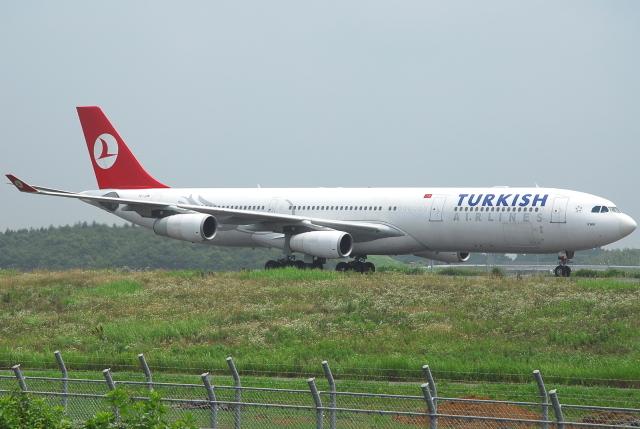 jun☆さんが、成田国際空港で撮影したターキッシュ・エアラインズ A340-311の航空フォト(飛行機 写真・画像)