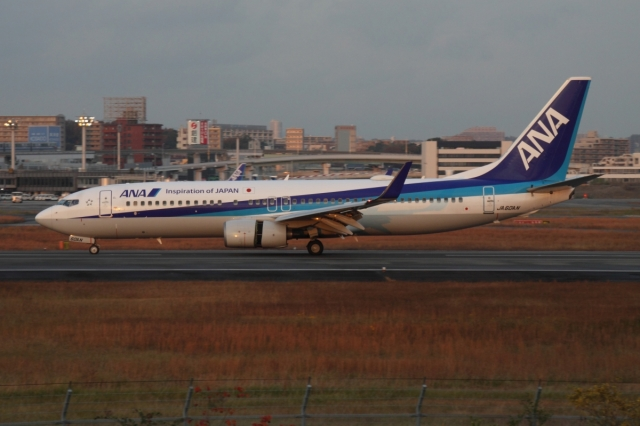 MAYAH(摩耶 まや)さんが、伊丹空港で撮影した全日空 737-881の航空フォト(飛行機 写真・画像)