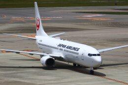 航空フォト:JA307J 日本航空 737-800