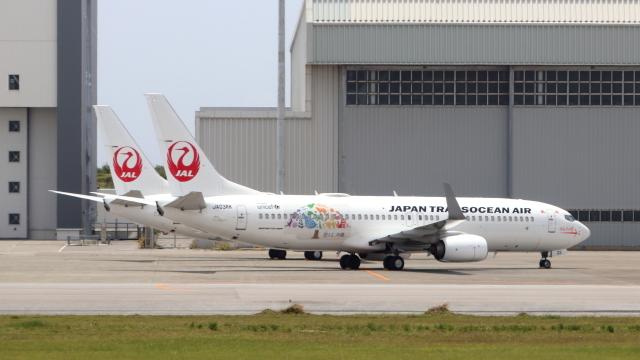 誘喜さんが、那覇空港で撮影した日本トランスオーシャン航空 737-8Q3の航空フォト(飛行機 写真・画像)